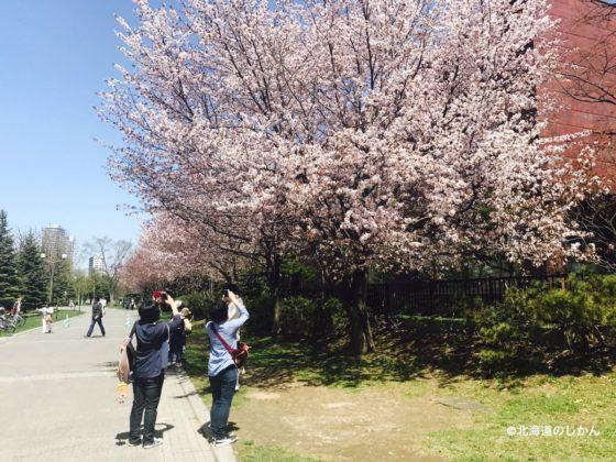 中島公園 (4)