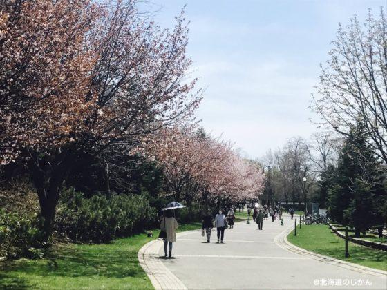 中島公園 (1)